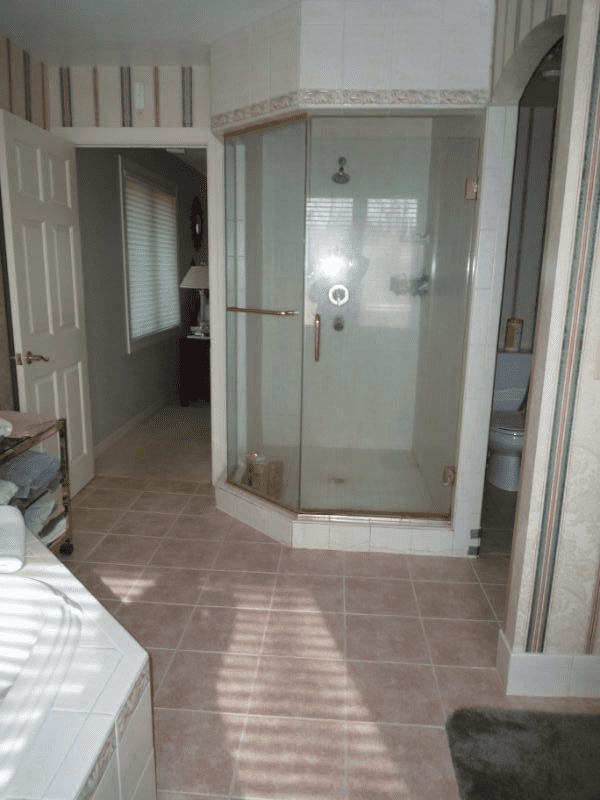 Mequon-Transitional-Master-Bath-before